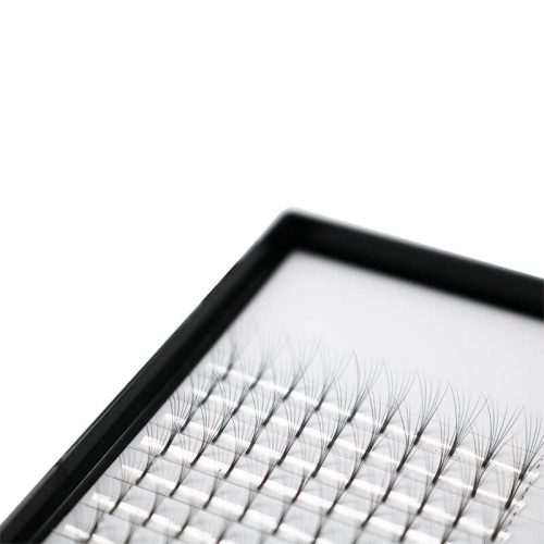 6d Volume Lashes