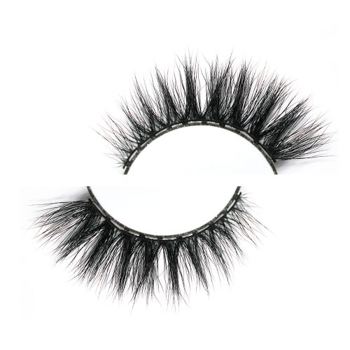 Lashes With 10 Magnets