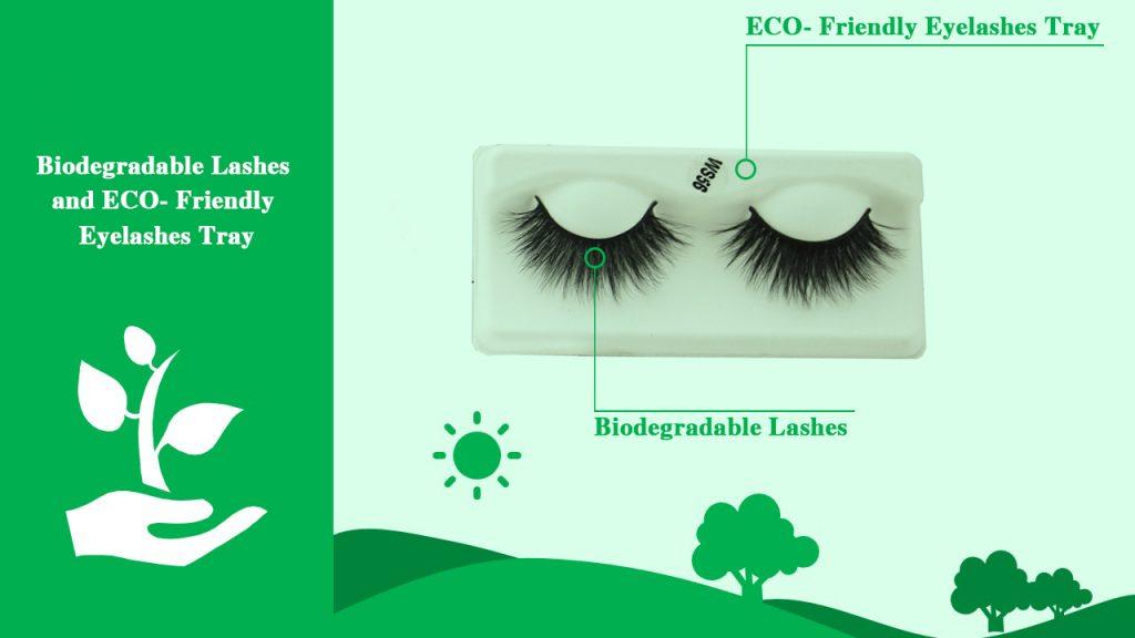 Biodegradable Lashes